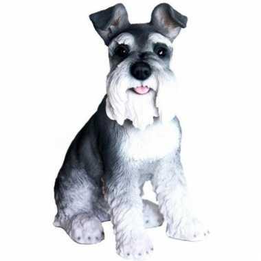 Beeld zittende zwarte schnauzer hond 33 cm