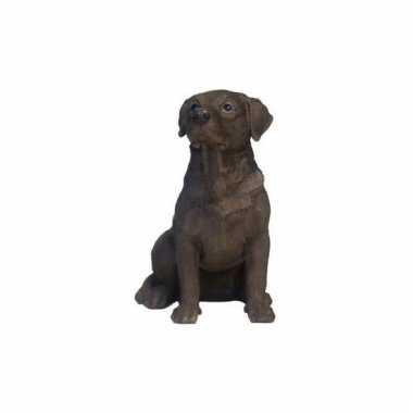 Beeldje zittende bruine labrador hond 21 cm