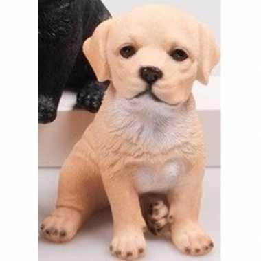 Dierenbeeld beige labrador hond 15 cm