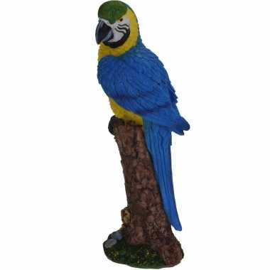 Dierenbeeld blauwe ara papegaai vogel 24 cm woondecoratie