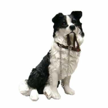 Dierenbeeld border collie hond 18 cm