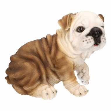 Dierenbeeld bulldog 18 cm