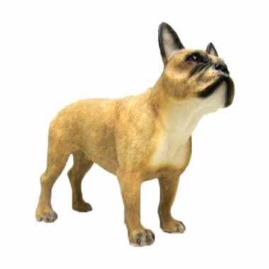 Dierenbeeld franse bulldog hond 15 cm