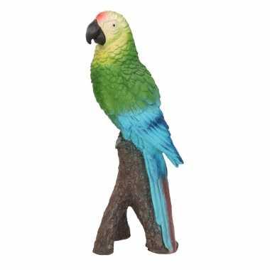 Dierenbeeld groene ara papegaai vogel 20 cm woondecoratie