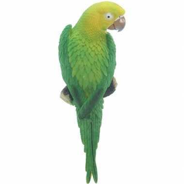 Dierenbeeld groene ara papegaai vogel 31 cm tuinbeeld hangdeco