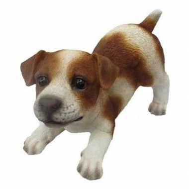 Dierenbeeld jack russel hond bruin/wit 14 cm