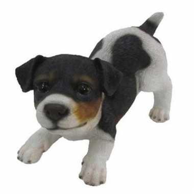 Dierenbeeld jack russel hond zwart/bruin/wit 14 cm