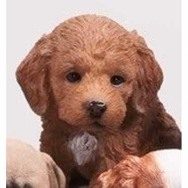 Dierenbeeld labradoodle hond bruin 15 cm