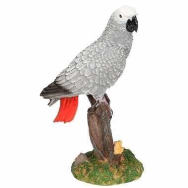 Dierenbeeld papegaai grijze roodstaart vogel 21 cm woondecoratie