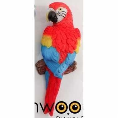 Dierenbeeld rode ara papegaai vogel 16 cm