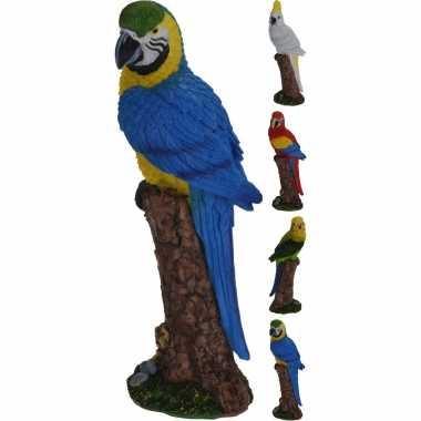 Dierenbeeld rode ara papegaai vogel 24 cm woondecoratie