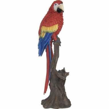 Dierenbeeld rode ara papegaai vogel 53 cm woondecoratie
