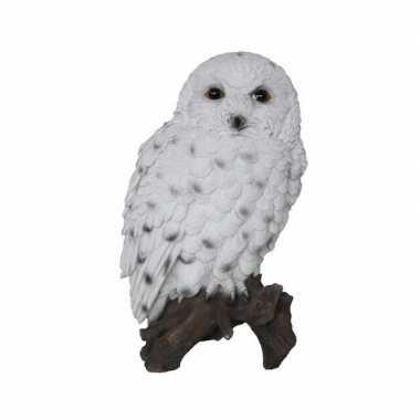 Dierenbeeld sneeuwuil op stam 23 cm