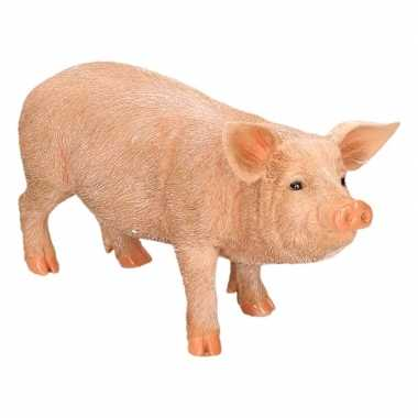 Dierenbeeld varken/big 36 cm