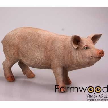 Dierenbeeld varken/big 65 cm