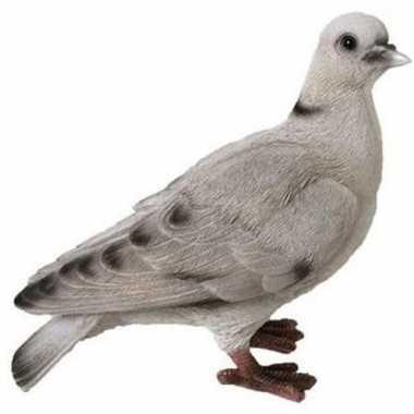 Dierenbeeld wit grijze duif 19 cm