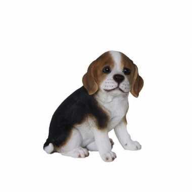 Dierenbeeldje beagle hond pup type 1 20 cm