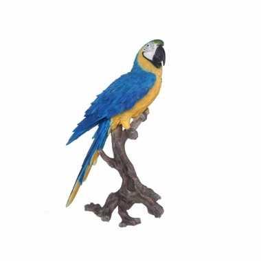 Tropische vogel beeld blauwe papegaai 70 cm